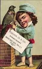 A Victorian Advertising Card - Wilkinson, Jr. & Orr - Troy, New York