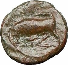 SYRACUSE Sicily Agathocles Underworld queen KORE BULL Ancient Greek Coin i25811