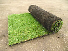 Sportsman Quality Garden Lawn Turf Grass Only £2.46 Per Square Metre