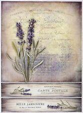 Ricepaper for Decoupage Decopatch Scrapbook Craft Sheet Vintage Lavender Card