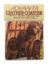 Irish Red Setter Puppy Dogs Single Leather Photo Coaster Animal Breed, AD-RS53SC