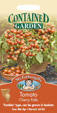 Mr Fothergills Tomato Cherry Falls Seed