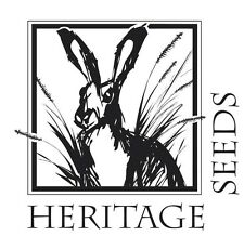 Heritage Seeds Yellow Rattle Wildflower  Seeds 30g Large Project Pack