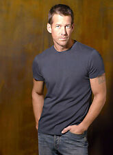 PHOTO DESPERATE HOUSEWIVES- JAMES DENTON - 11X15 CM  # 20