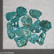 "TURQUOISE Wave China med-lg 1-1 1/2"" flat tumbled 1.8-2 oz bulk stones blues"