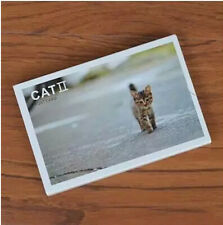 30 sheets  new gift card cute cat animal postcards