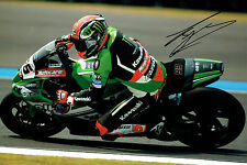Tom SYKES Donnington 2015 SIGNED WSBK Photo AFTAL Autograph COA AUTHENTIC