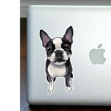 Boston Terrier Full Color Large Decal - NEW - FREE SHIPPING -