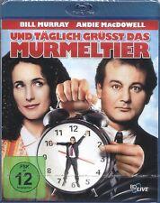 Blu-ray UND TÄGLICH GRÜSST DAS MURMELTIER # Bill Murray, Andie MacDowell ++NEU