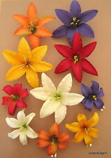 10 Piece 2 Size Lot,Mixed Color Lily Silk Flower,Hair Clip,Updo,Pin Up,Rockbilly
