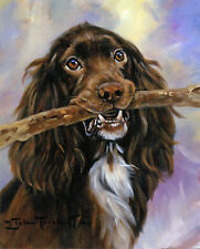 FIELD SPANIEL GUN DOG GUNDOG FINE ART LIMITED EDITION PRINT - by John Trickett