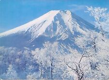 BG14374 wrapped in winter silence mt fuji japan