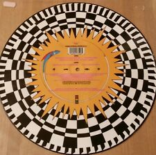 Funky Worm Hustle To The Music 12 vinyl picture disc