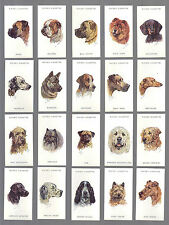 CIGARETTE CARDS.John Player Tobacco.DOGS HEADS by Biegel.(1939)(Full Set of 50).