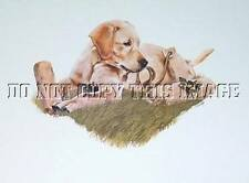 NEW BEAUTIFUL GALLERY RELEASE YELLOW LABRADOR RETRIEVER PUPPY PRINT