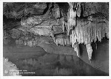 BR17705 grottes de Han la Salle des Draperies belgium