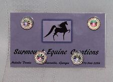 Horse Show Number Magnets - Clear Rainbow #1- Saddleseat, Hunt Seat, Western