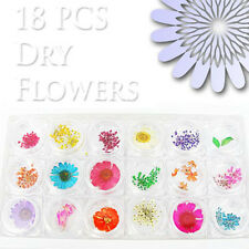18 colors Dry Flower for Nail Art Decals with FREE GLUE