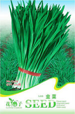 1 Pack 100 Garlic Chives Seeds Allium Tuberosum Fragrant-Flowered Garlic C068