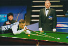 Mark SELBY SIGNED 12x8 Photo Autograph COA AFTAL Jester From Leicester SNOOKER