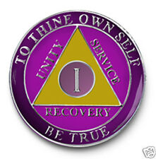YRS 1-40 AA Anniversary Recovery Coin/Medalliion Amethyst/Silver