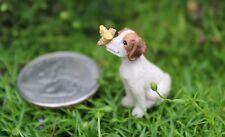 Miniature Itty Bitty Beau The Puppy Dog Dollhouse Fairy Garden  1189