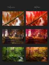 415 Professional photo presets for Lightroom 3, 4, 5 and 6