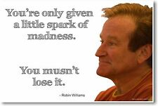 Robin Williams - NEW Famous Actor Comedian POSTER