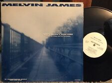 Melvin James ‎– Why Won't You Stay (Come In, Come Out Of The Rain) NM VINYL 12""
