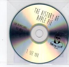 (DS313) The History of Apple Pie, See You - 2013 DJ CD