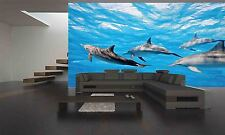 DOLPHINS IN THE SEA , UNDERWATER  Wall Mural Photo Wallpaper GIANT WALL DECOR