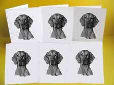 Hungarian Vizsla Dog Notelets / Blank Cards pack of 6, A6
