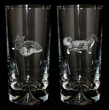 MAINE COON *CAT GIFT*  Boxed PAIR GLASS HIGHBALL TUMBLER