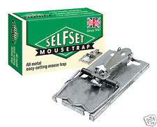 Self Set Metal Mouse Trap TVS160