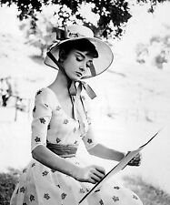 AUDREY HEPBURN 8x10 PICTURE drawing outdoors PHOTO