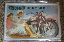 TrIumph BDG 250 H Tin Metal Sign Painted Poster Comics Book Superhero Wall Decor