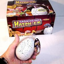 2 JUMBO DINOSAUR EGG magic dino growing eggs tricks hatching PREHISTORIC hatch