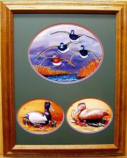 Ringneck Duck Decoy/Flying Ring Bills/Ducks Unlimited Edition/Diving Ducks/LOOK