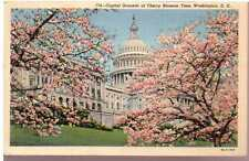1931 Postcard Capitol Grounds at Chery Blossom Time Washington D.C. Unposted