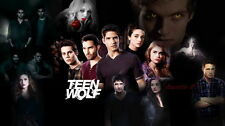 "074 Teen Wolf - American TV Series Hot Shows 25""x14"" Poster"