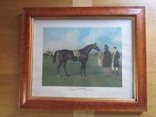 HORSE RACING sportif imprimer par JOHN FREDERICK HERRING». PIERRE DE TOUCHE» CHEVAL DE COURSE.