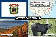 SOUVENIR FRIDGE MAGNET of THE STATE OF WEST VIRGINIA USA