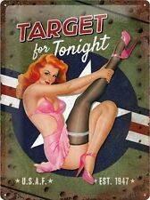 US Air Force Target Pin Up Blechschild Schild Blech Metall Tin Sign 30 x 40 cm