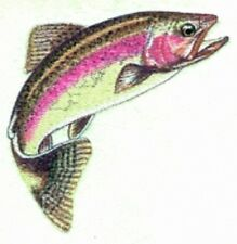 Embroidered Short-Sleeved T-Shirt - Rainbow Trout BT2887