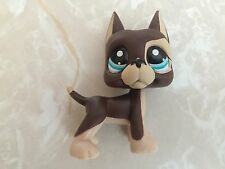 Littlest Pet Shop RARE Great Dane Dog Puppy #817 DOT Chocolate Blue Tan LPS