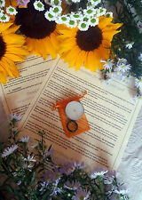 Money Wealth Abundance ~ Candle Spell Kit ~ Affirmation, Agate Wiccan Ring