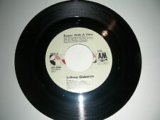 Disco 45 Jeffrey Osborne - Room With A View / The Power   A&M Records  NM 1986