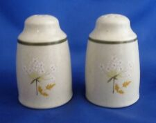 ROYAL DOULTON 'WILL O'THE WISP' SALT AND PEPPER POTS