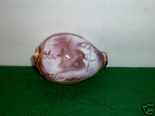"Beautiful Hand-Carved/Painted Tiger Cowrie Shell ""Hawaii Beach"" Unused"