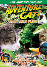 Adventure Cat DVD - Television for CATS!